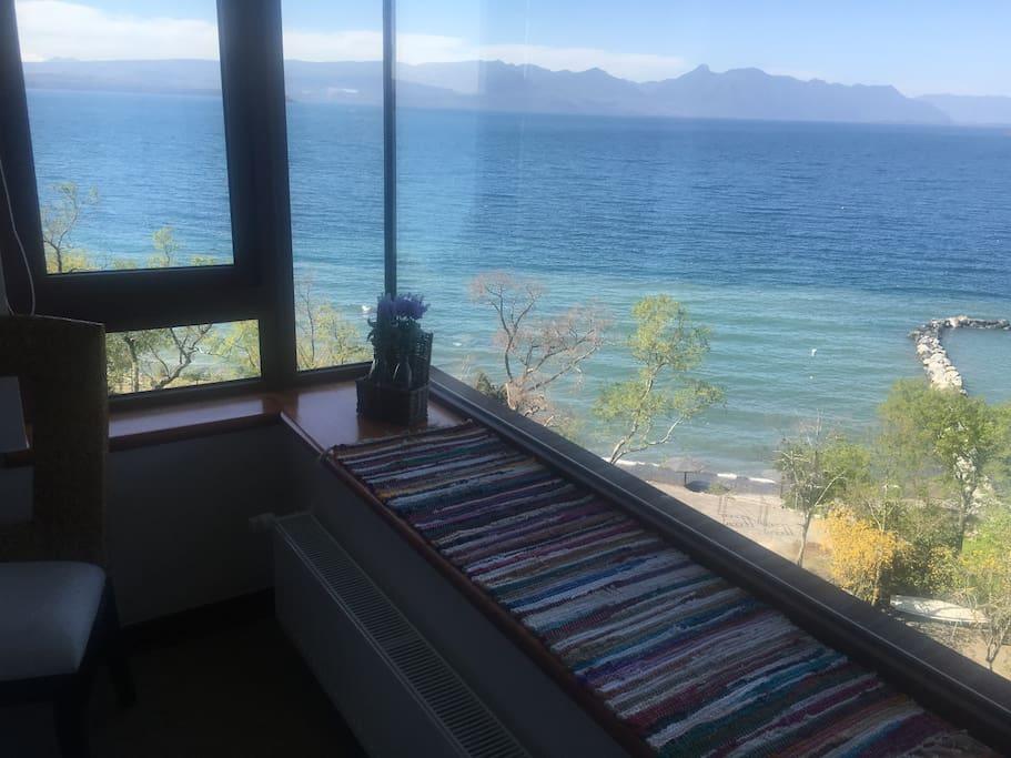 Vista desde Suite 1
