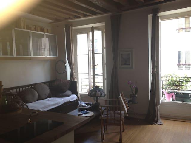 Luminous apartment near to Marais