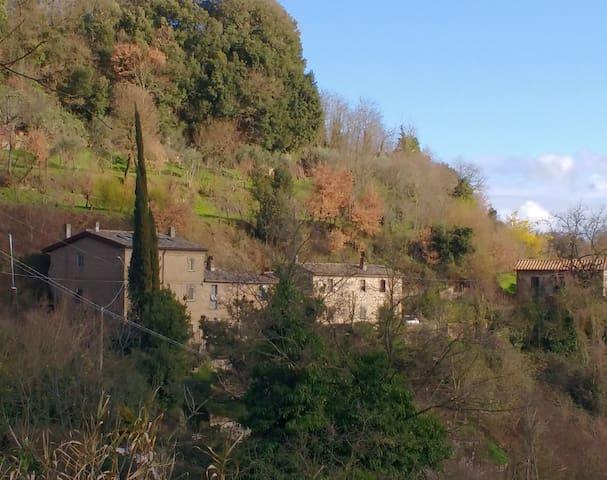 Rustico - Bagnoregio - Huis