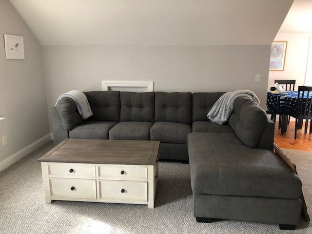 Living room with pullout queen sofa.
