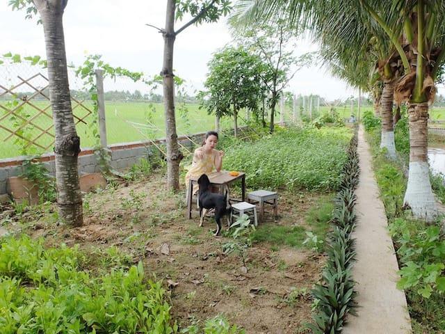 Eco-Chi Homestay, Phan Rang homestay Bamboo room