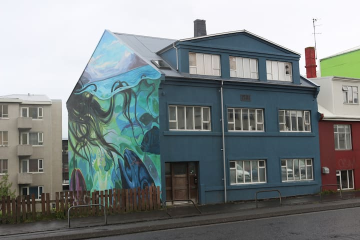The Blue House in downtown Reykjavik