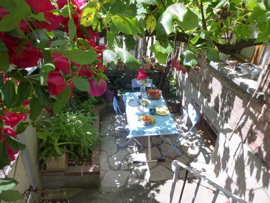 On déjeune sous la vigne et les roses