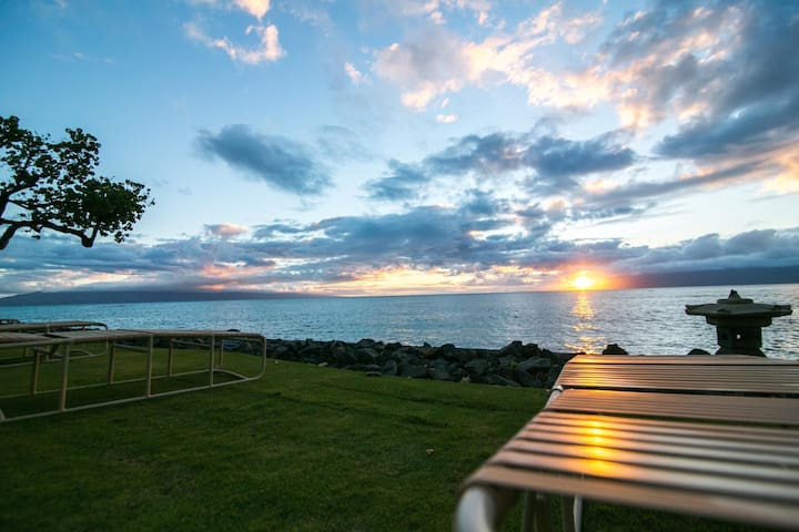 Affordable ocean front Maui condo - Lahaina