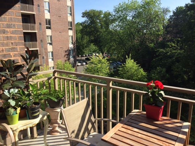 Квартира с бассейном - Falls Church - Apartment
