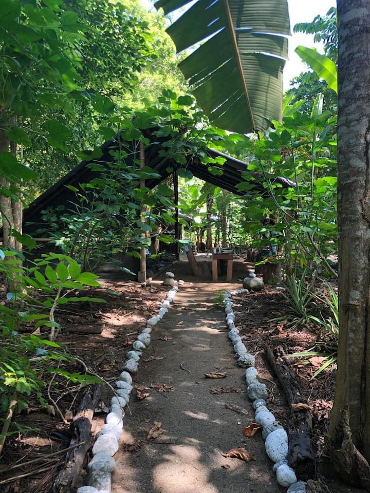 Finca Morpho Permaculture Farm Stay
