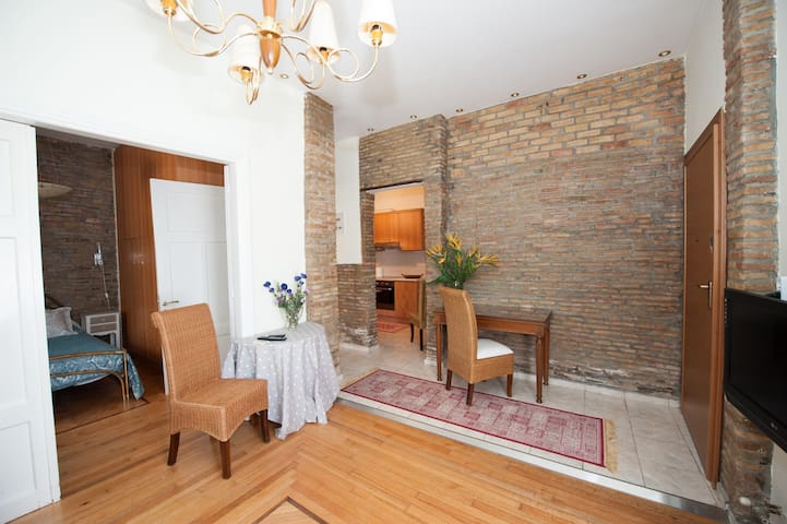 Period apartment in central Athens - Athina - Apartament