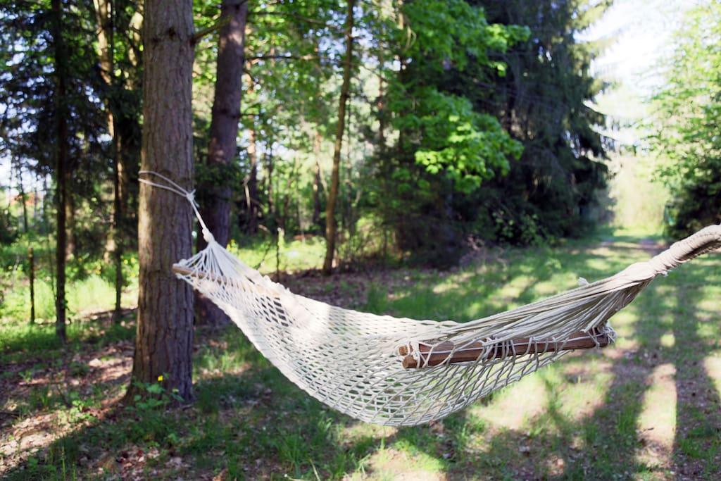 ogród, miejsce do wypoczynku