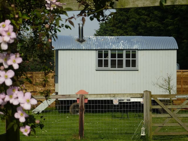 Shepherds Hut - Burnham Market - Bed & Breakfast