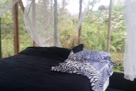 Screened jungle hut king bed