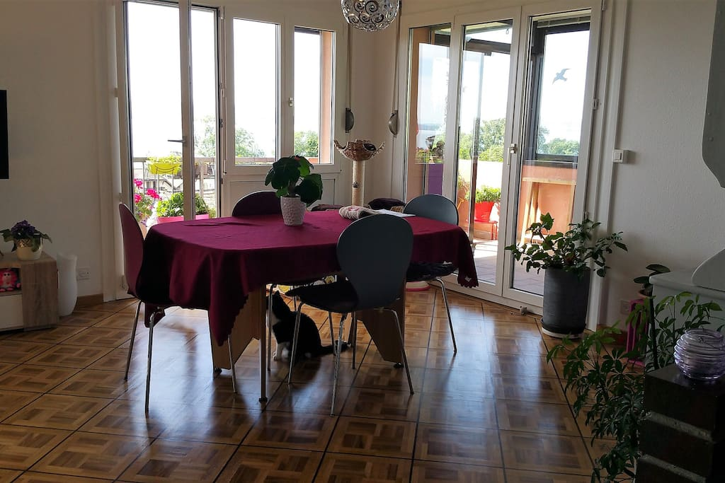 Salle à manger, table extensible