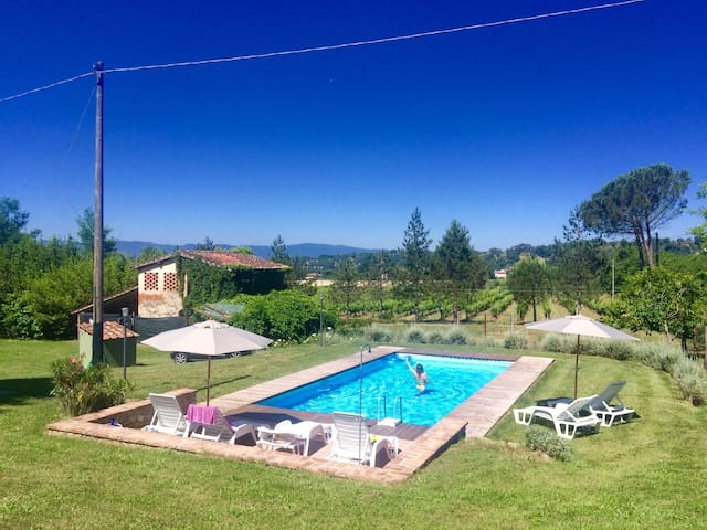 CASA CONCINO - QUIET PROPERTY INTO TUSCAN WILD - Terranuova Bracciolini - Villa