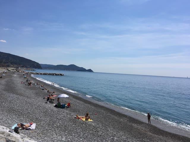 Lavagna Beach 20th April 2019