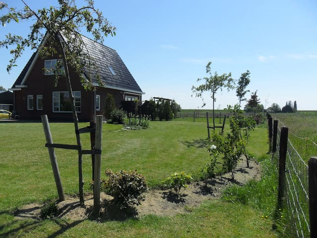 Country side near lake IJsselmeer - Hem