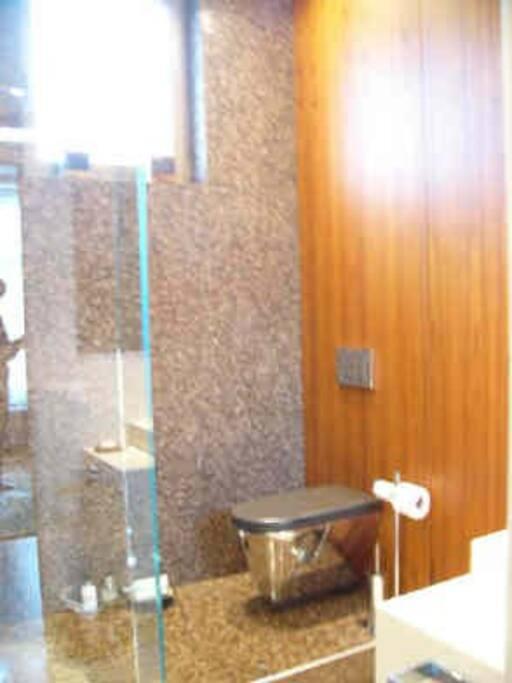 Salle de bains avec douche et toilettes.