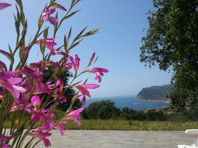 La casa sulla quercia - Province of Salerno - Huis