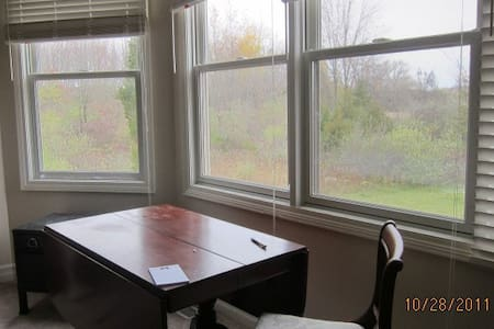 Ann Arbor and area:  U of M  professional - Dexter - Guesthouse