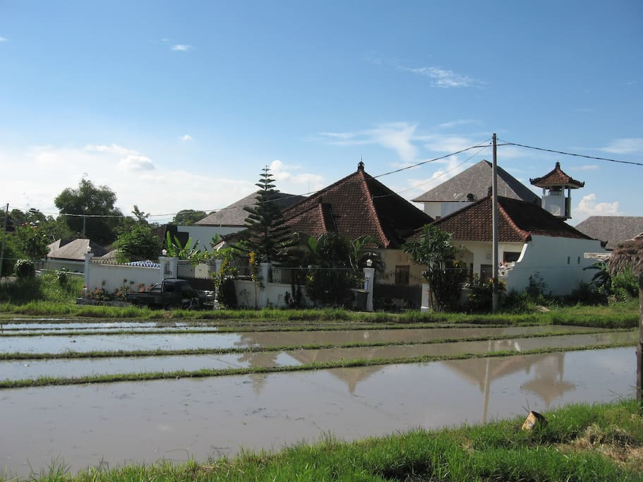 The villa is still situated in front of a ricefield