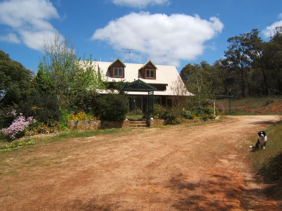 treetops guest house, a family run home stay bed and breakfast