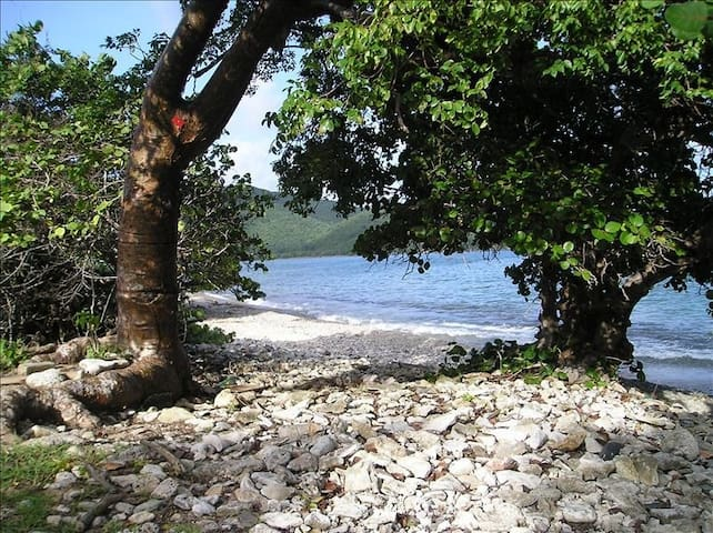 Walk to Secluded Beach -Easy Access - Coral Bay - Appartement