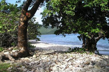 Walk to Secluded Beach -Easy Access - Coral Bay - Apartment