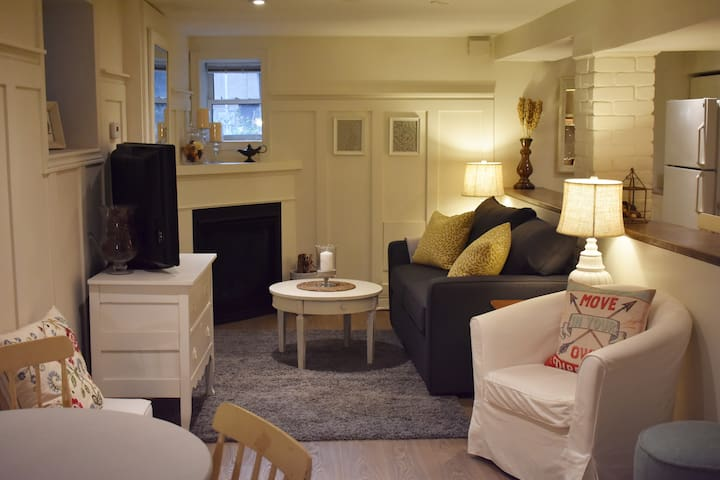 Large Cozy Apartment in Parkdale