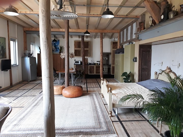 Spacious,stylish, comfy Loft 10 min from Amsterdam