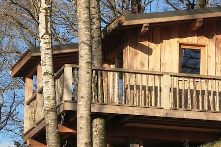 Cabane dans les arbres - Singles - Blockhütte