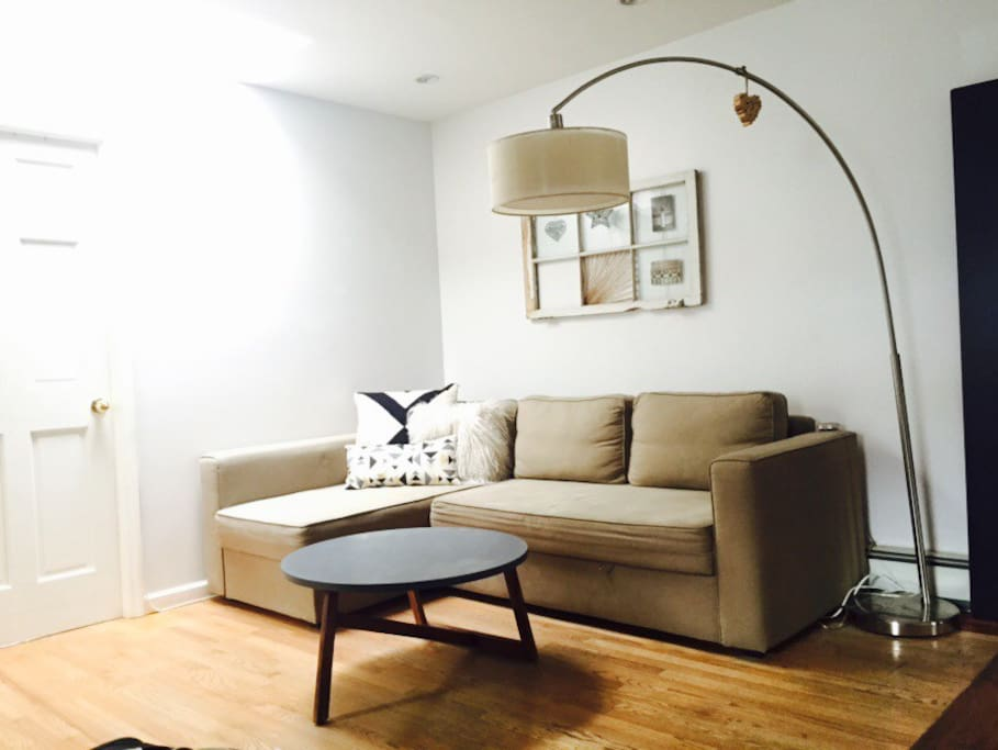 Living room with pull out couch