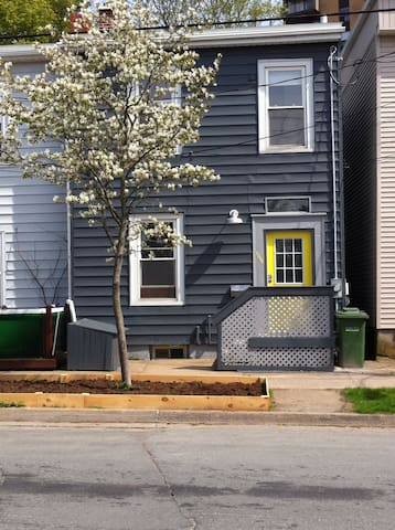 Cozy Row House By The Commons - Halifax - Bed & Breakfast