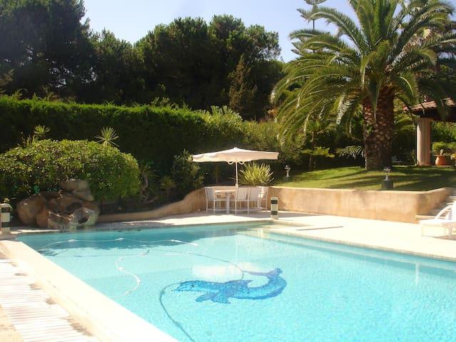 Magnifique villa bord de mer - Pietrosella - Villa