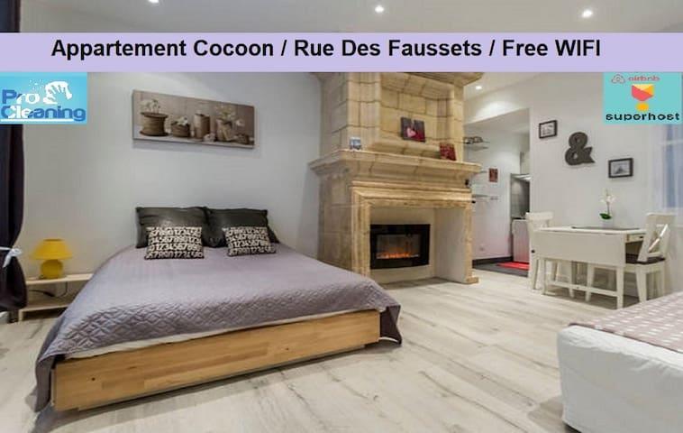 Appart Cosy : Rue des Faussets / St Pierre *****