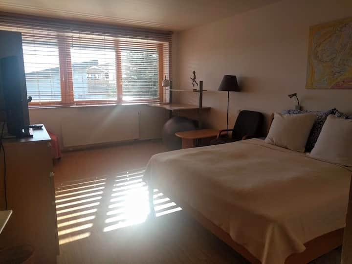 Spacious room 15 mins from the airport