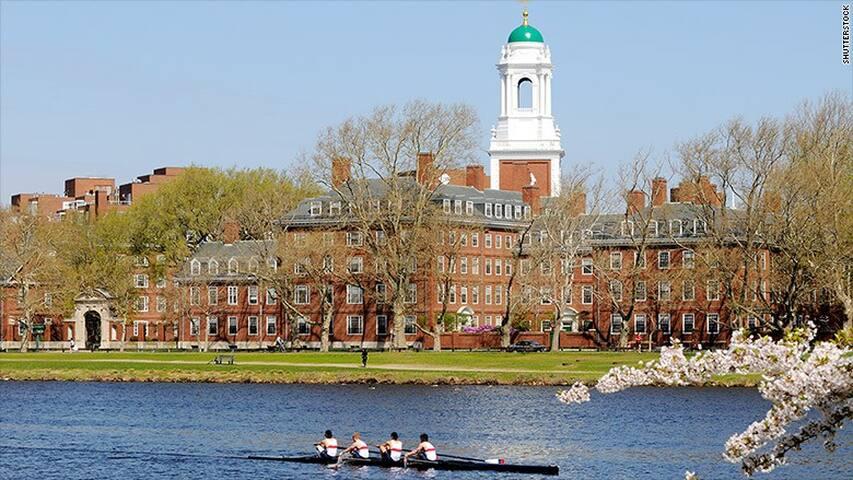Bright spacious 1 BR in heart of Harvard/Cambridge - Cambridge - Appartement