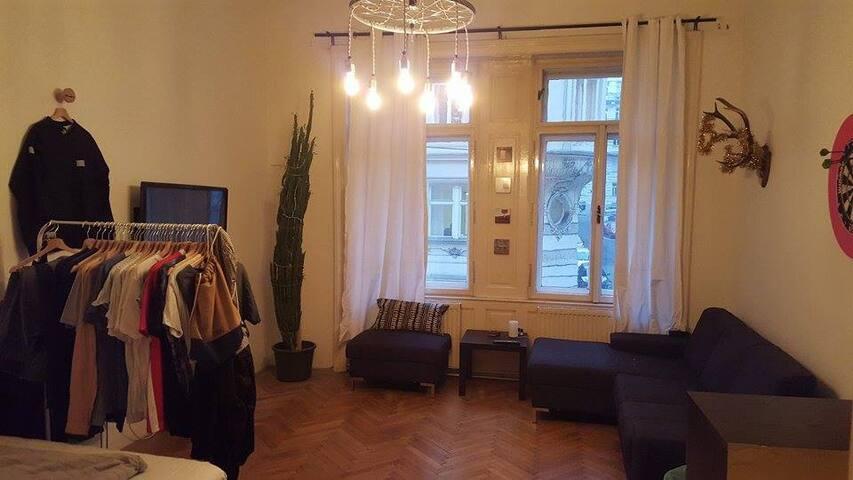 Schönes Altbauzimmer im 6. Bezirk - Wien - Huoneisto