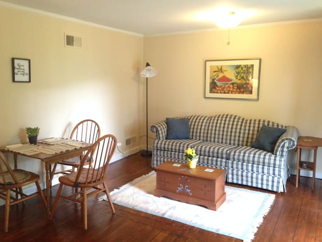 Sunny Apartment in Manchester VT - Manchester - Appartamento