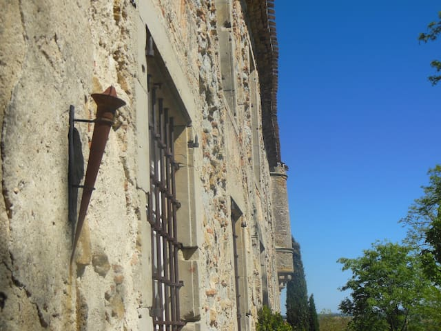 Chateau near Carcassonne with pool - Souilhe - ปราสาท