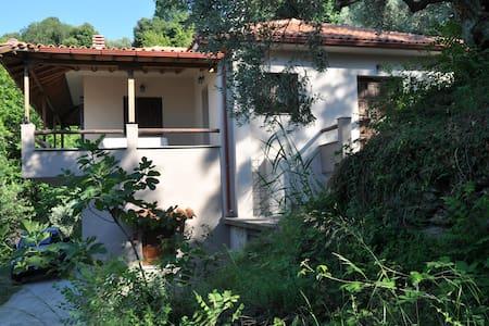 L - Studio apartment near the sea - Παπά Νερό - Lakás