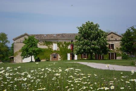 L'écurie des Mérits - Cahuzac-sur-Vère - 独立屋