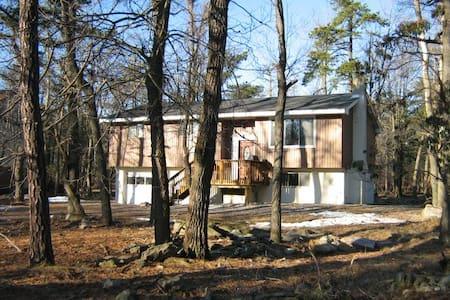 Lovely Lake Harmony mountain house - Lake Harmony - Hus