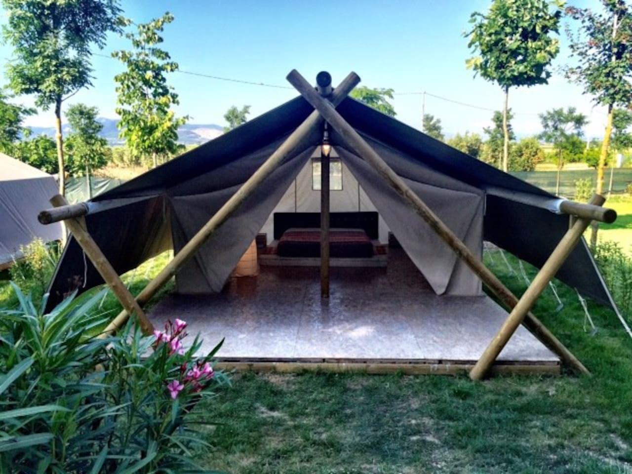 Le nostre maxi tende Lounge