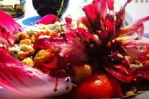 Sea-Salad-Sun