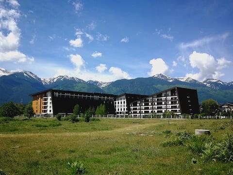 Studio in Aspen Valley complex