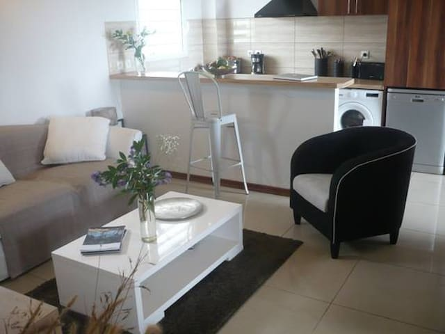 bel appartement grand standing - Saint-Denis - Flat