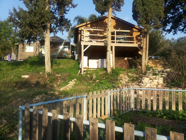 wood house facing sea and wood - Ein Hod - Barraca