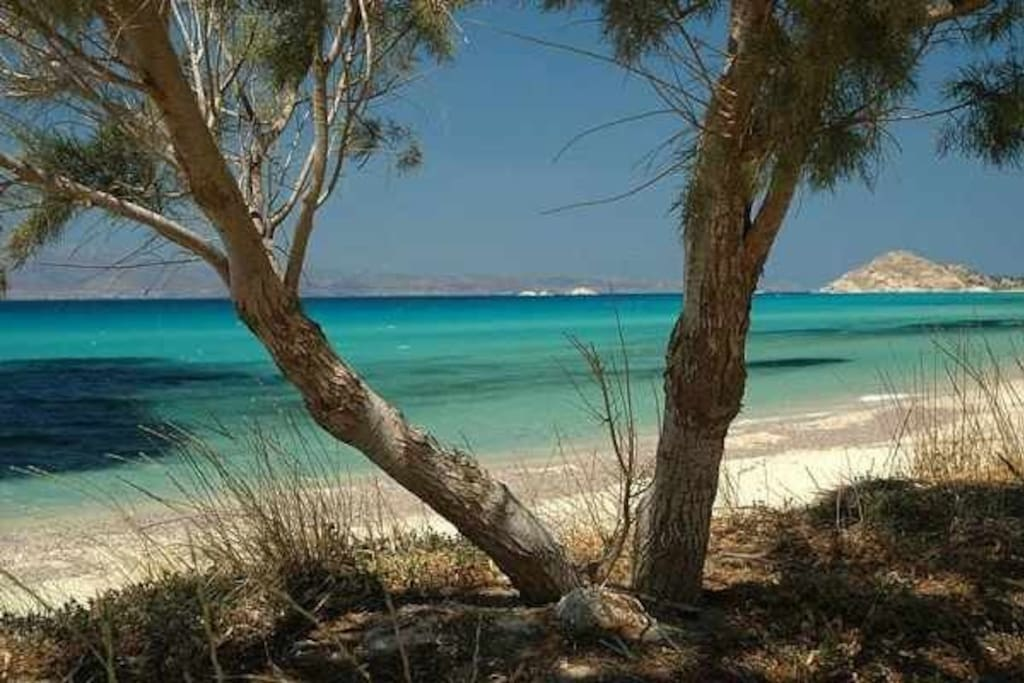 The beach welcomes you with Azure crystal waters and white sand. Sand dunes and a 3km cosast line. Welcome to your summer paradise!!