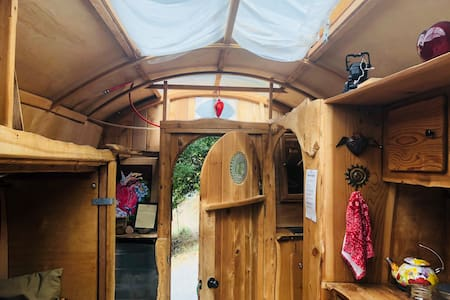 Love Shack Caravan  in Gorgeous park setting