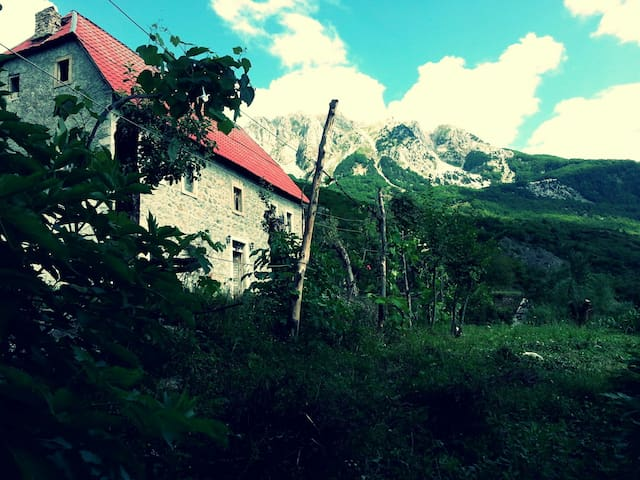 Pecaj B&B, camping site