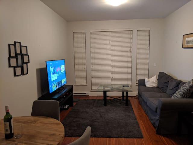 1 Bedroom, Entire unit, fully furnished