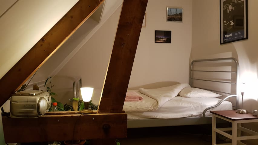 Nice, cozy ROOM near center Groningen (500 m.)